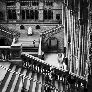 London Natural History Museum L1016069